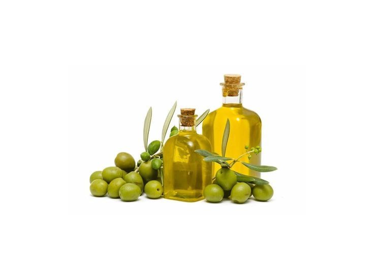 1,95 €Organic fresh Olive tree seeds (Olea europaea) Greece variety Price for Package of 5 seeds. The olive tree is a member of the Oleaceae family and a plant that is native to coastal areas in the Mediterranean. Olive trees are beautiful additions to any yard or indoor environment and can be grown relatively easily from their seed state. Olives are now cultivated in many regions of the world