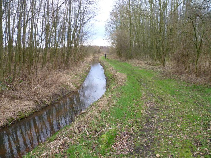 2014-02-09 Mooie doorkijkjes langs de Hagenbeek