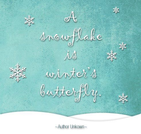 I love this saying! Each one of us is individual just like a snowflake. Many blessings, Cherokee Billie