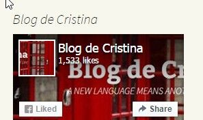 Best blog to learn English for free.    Blog de Cristina