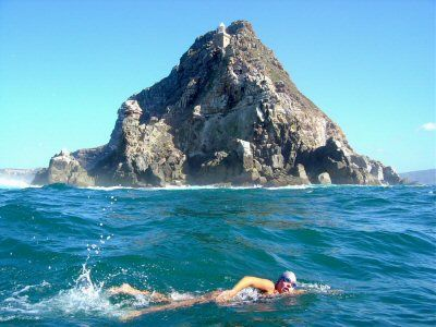 open water swimming at Cape Point, SA