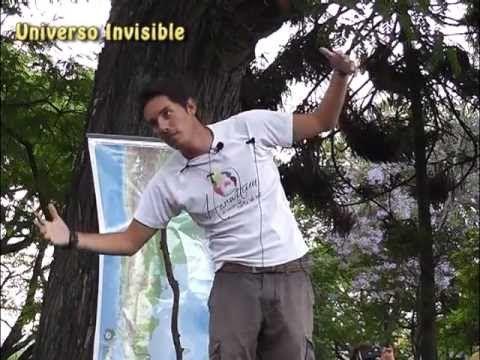 MATIAS DE STEFANO en Salta, Activacion del Laríngeo / UNIVERSO INVISIBLE