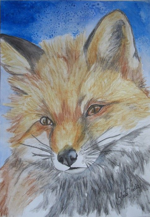 'Foxy lady - nature series' by Laila Iredias.