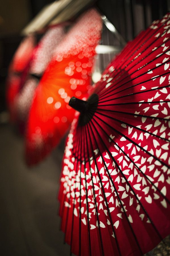 Wagasa : Japanese umbrella