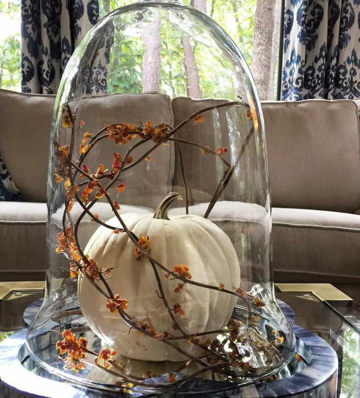 Decorating Ideas For Glass Domes For Autumn Pinterest