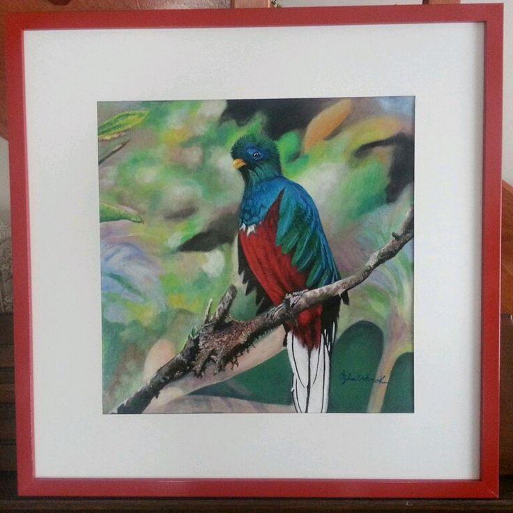 Tropical bird Artist Özlem Erkorol 45 x 55 cm Acrylic painting on press canvas