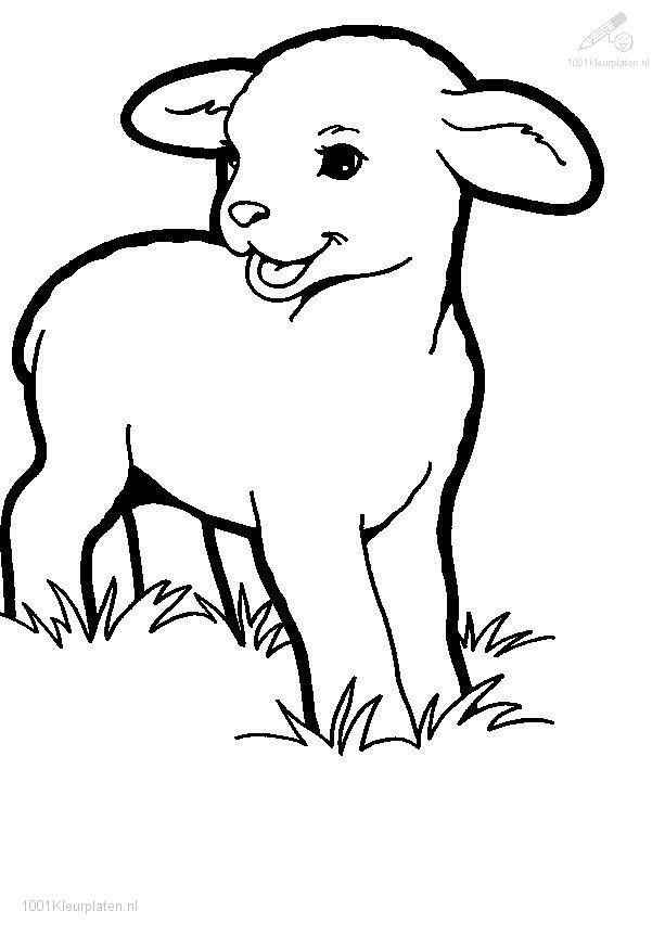 Lion Lamb Coloring Page Youngandtae Com Animal Coloring Pages Lion Coloring Pages Spring Coloring Pages