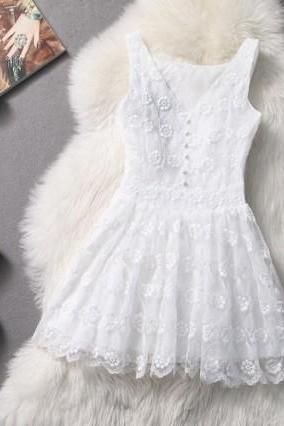 Slim Lace Embroidered Dress