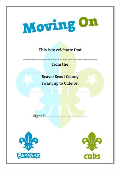 18 best images about beaver scouts certificates on
