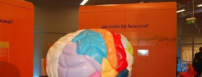 """W nowym roku szkolnym na uczniów wrocławskich szkół czekają nowe atrakcje. Jedną z nich będą multimedialne lekcje biologii, organizowane w naszych """"Ogrodach Doświadczeń. Humanitarium""""."""