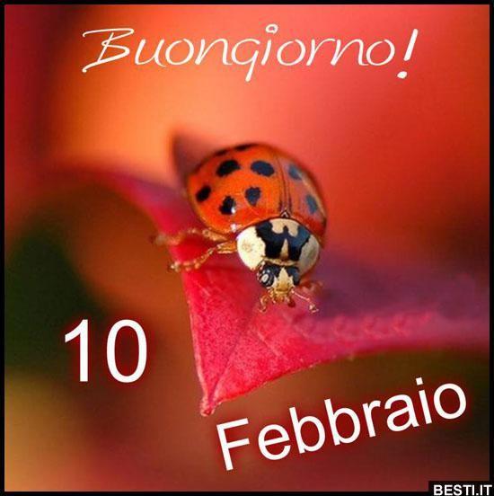 10 Febbraio - Buongiorno