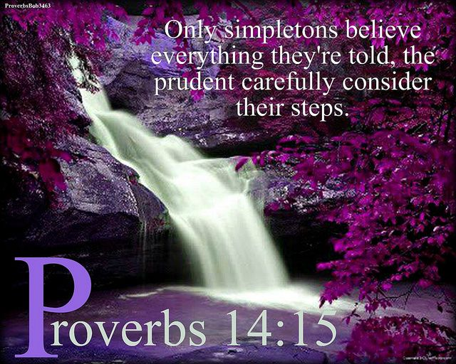 """Proverbs 14:15 KJV!! ( http://kristiann1.com/2015/01/01/pb1415/ ) """"The simple believeth every word: but the prudent man  looketh well to his going."""" """"Love Always, Shalom YSIC, Kristi Ann"""" ✝✡Yeshua-Jesus Christ is KING of kings✡✝"""