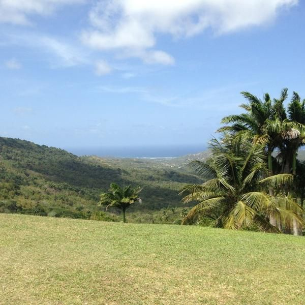 Stunning scenery & vivid vistas at the top lookout spots in Barbados...