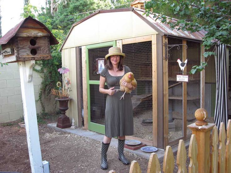 making a chicken coop out of an old shed 1