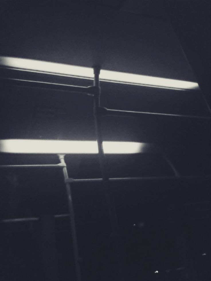 Bus Lights