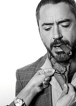 Robert Downey Jr. (I wish those were my hands)