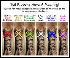 Did you know? Back in the day, equestrians often didn't have time to greet and speak with all the other riders before a foxhunt... so they put ribbons in their horses' tails to communicate what otherwise couldn't be communicated while racing over the fields. Used to have to rock the red ribbon quite a bit... Sigh, mares.