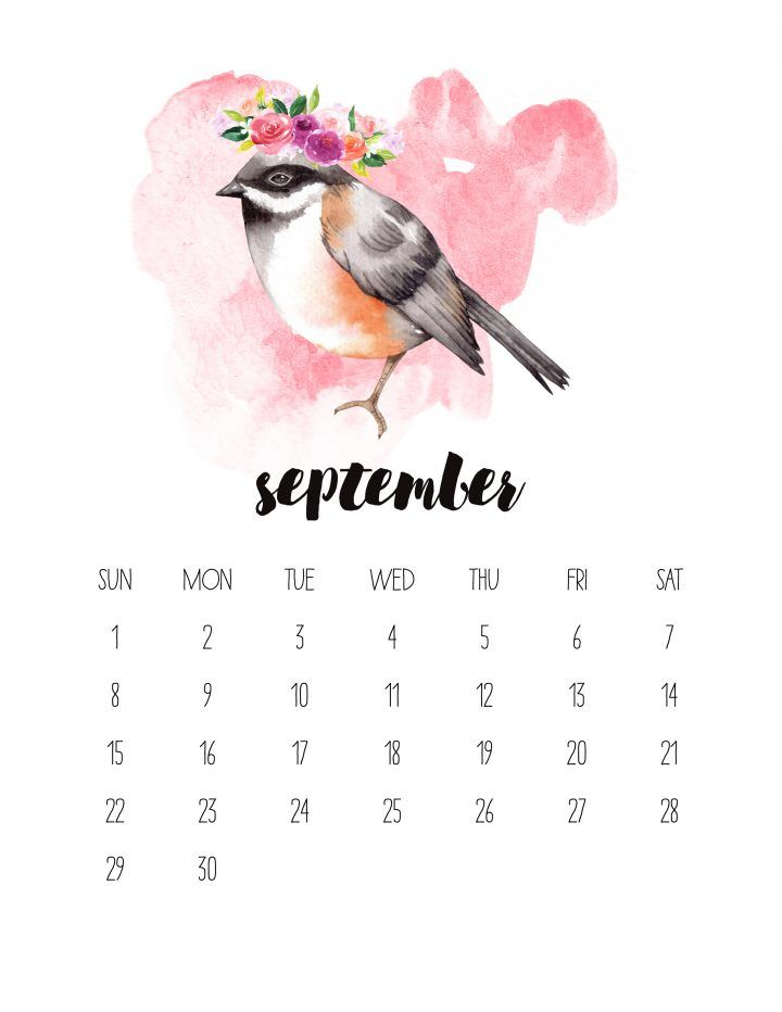 Free Printable 2019 Watercolor Animal Calendar Desktop Calendar