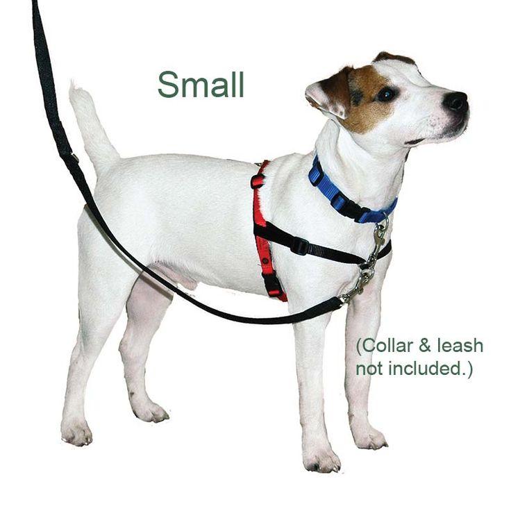 Halti No Pull Dog Harness Small