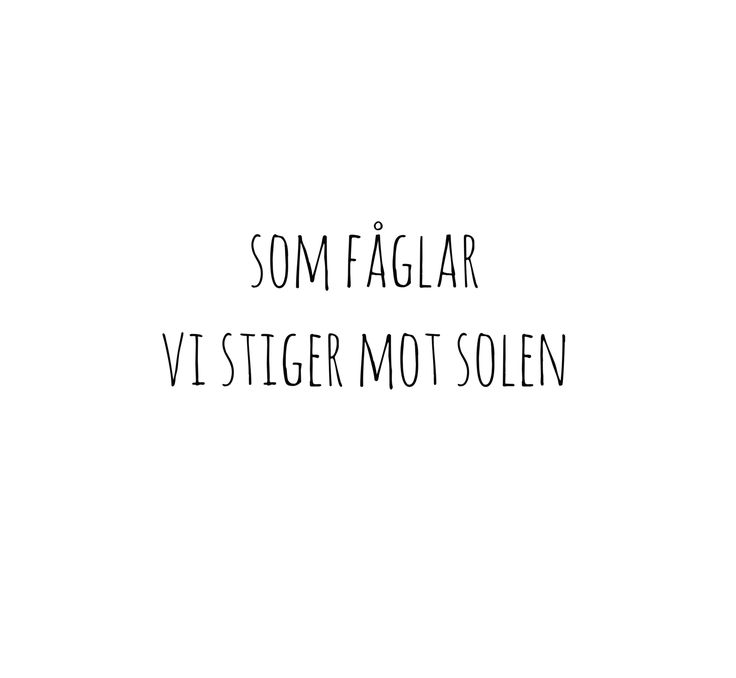 Thomas Stenström - Fåglar ft. Frida Sundemo