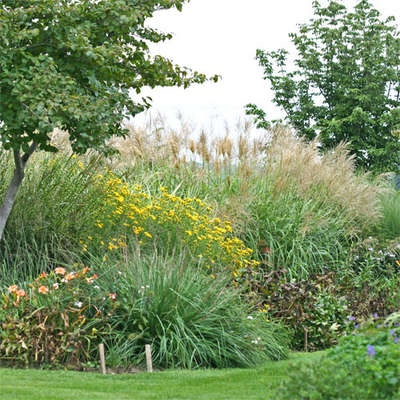grasses corner bed: Wiggly Gardens, Grass Corner, Corner Beds, Flower Beds, Outdoor Spaces, Fall Grass