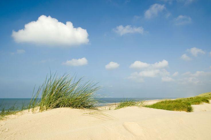 Insel Föhr – Besonderes Kleinod der Nordsee