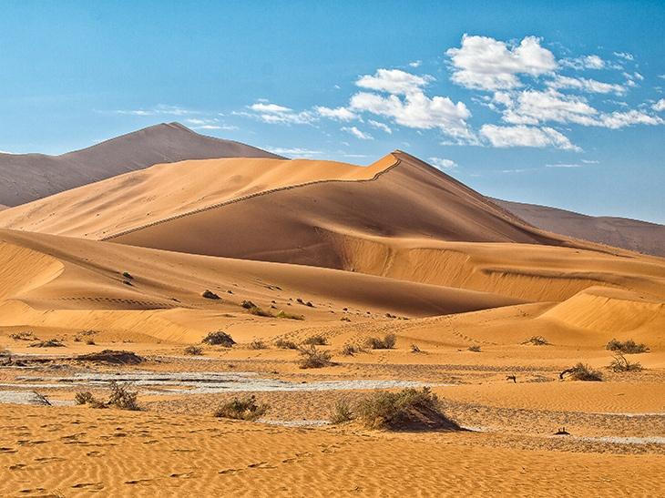 Mama dune