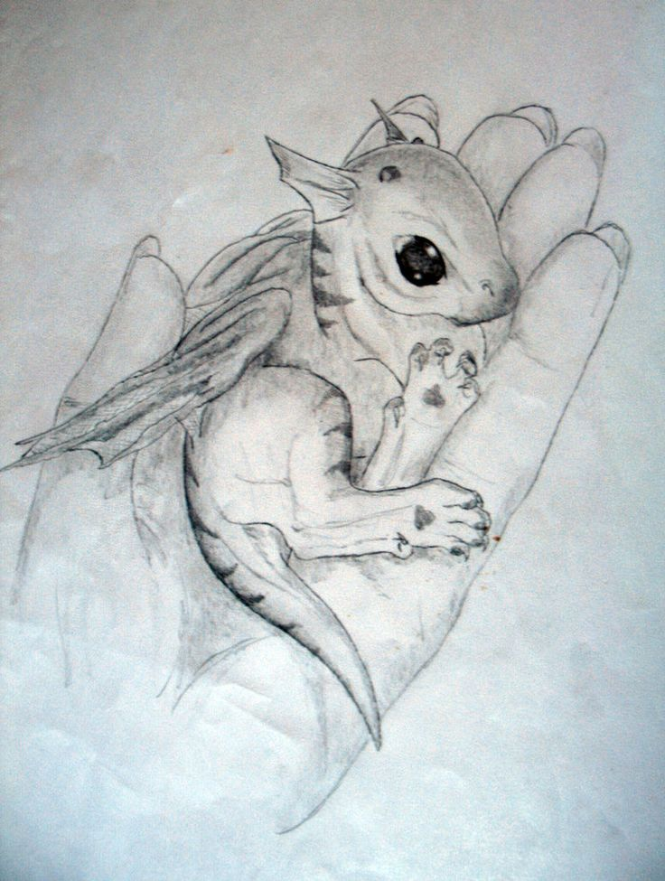 baby dragon drawing - Google Search