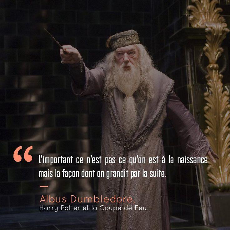 Découvrez comment JK Rowling, à travers ses déclarations et ses livres, a su nous inspirer. JK Rowling et Harry Potter, c'est bien plus qu'une histoire de sorciers au final. Car si la saga nous a bercé pendant des ann...