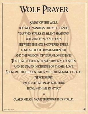 i love this....the wolf is my spirit guide....                                                                                                                                                                                 More