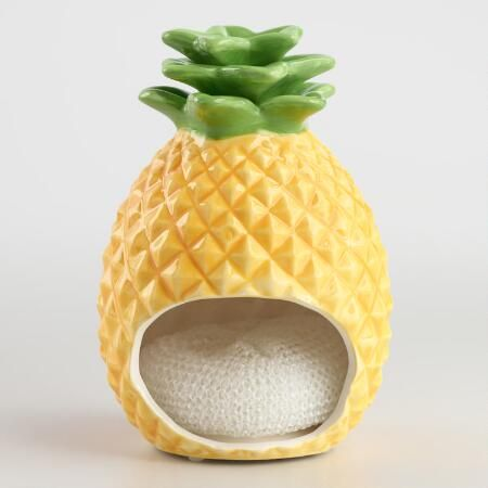 Pineapple Ceramic Sponge Holder | World Market