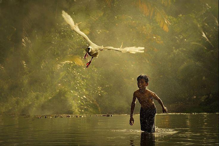 Aș vrea să pot zbura