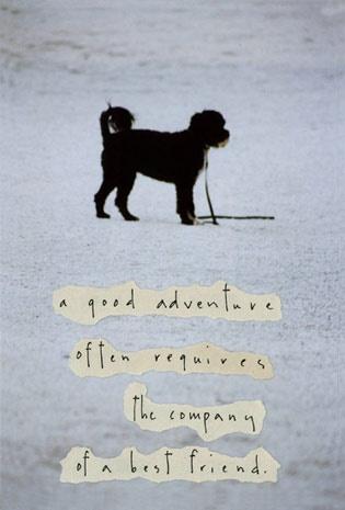 Diane Hanna's good adventure