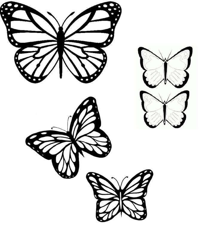 33 best butterfly tattoo outline images on pinterest tattoo outline butterfly tattoos and. Black Bedroom Furniture Sets. Home Design Ideas
