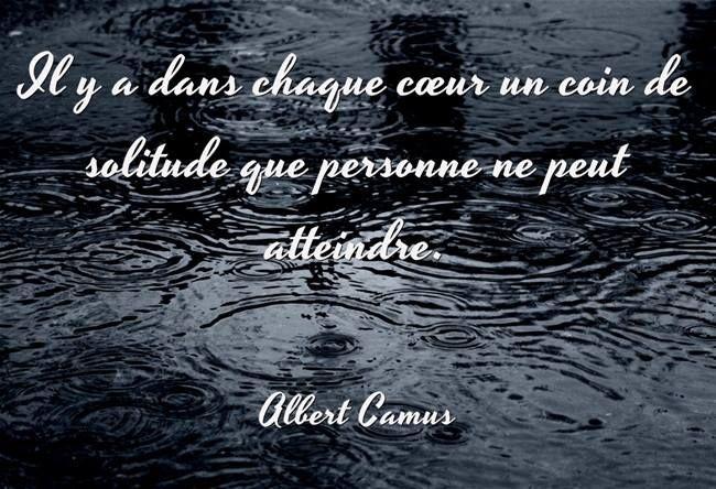Albert Camus, né le 7 novembre 1913 à Mondovi, près de Bône, en Algérie, et mort le 4 janvier 1960 à Villeblevin, dans l'Yonne, est un écrivain, philosophe, romancier, dramaturge, essayiste et nouvelliste français.