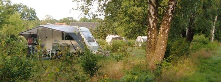 De camping - Natuurkampeerterrein, Landgoedcamping, Minicamping | Lutje Kössink