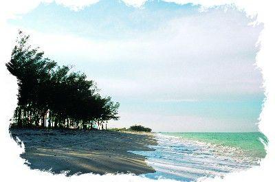 Florida Beach Vacation Planner: Beach Profiles H to M