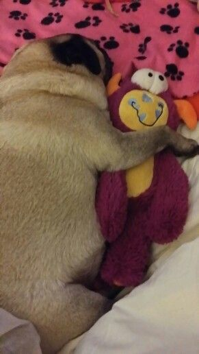 Sleeping with his friend