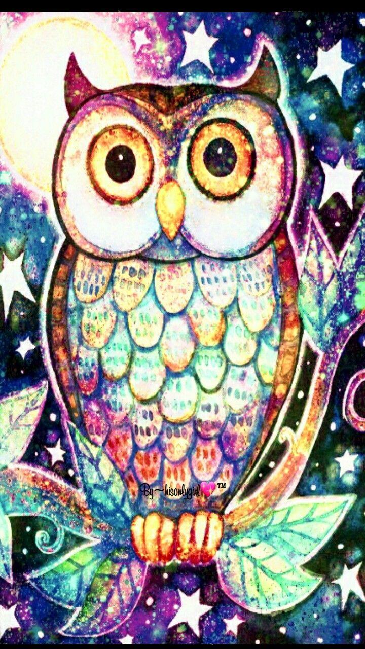 Cute Colorful Owl Wallpapers Cute Owl Wallpaper Download Hd Cute
