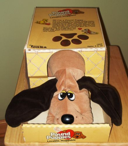 Pound Puppies #nostalgia #1980s #toys  Awww i had this with the puppies, santa pressie, box said handle with care my mam brought it back to shop not opening it, and inside was this haha, marketing did not think it through.....