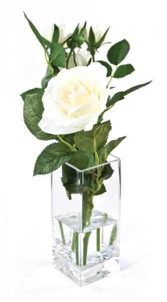 Roses and leaves in a square bud vase, set in Still Water™. Cream. Height 18cm. €18.50