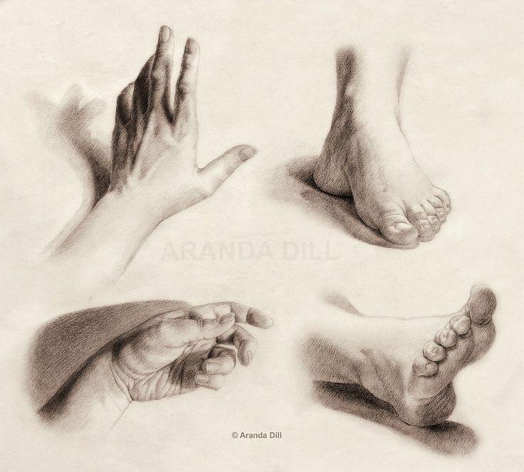 Hands and Feet by ~ArandaDill on deviantART
