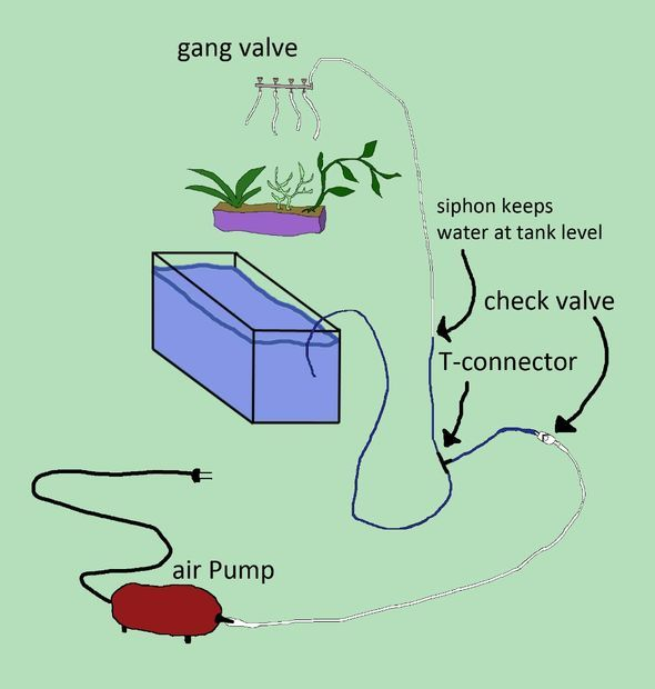 air pump method Aquarium Aquaponic Wall: 20 Steps (with Pictures)