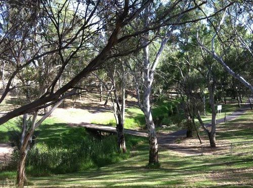 River Torrens Linear Trail, West Beach to Adelaide CBD to Athelstone | Walking SA