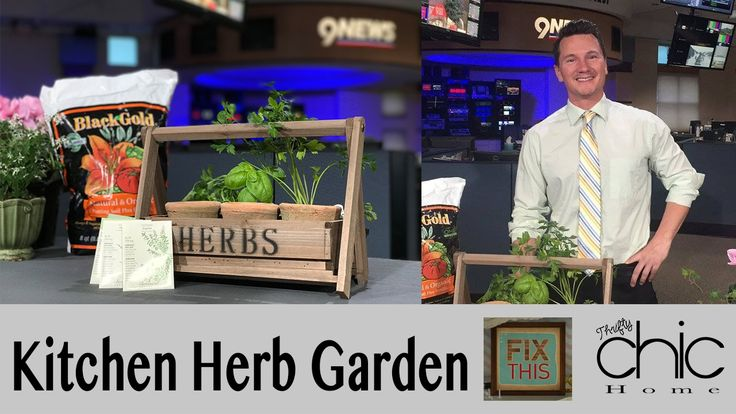 Join Brandon from Thrifty Chic Home and Vida Urbanos from Fix This on 9 News Denver to learn how to make your own kitchen herb garden!