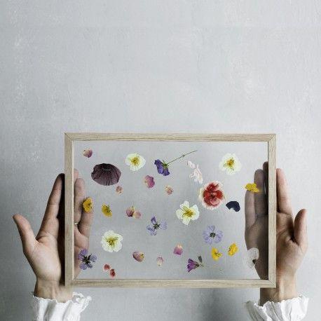 4-2-1: Vier Stücke Eiche, zwei Plexiglasscheiben, ein Gummiband. Mehr braucht es nicht für einen Bilderrahmen.