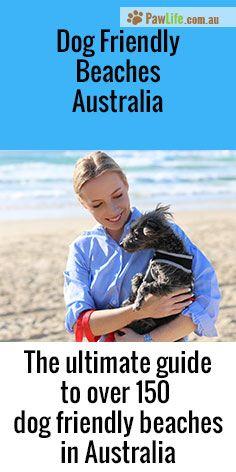 Dog-friendly Australia - The ultimate guide to over a 150 beaches around Australia.