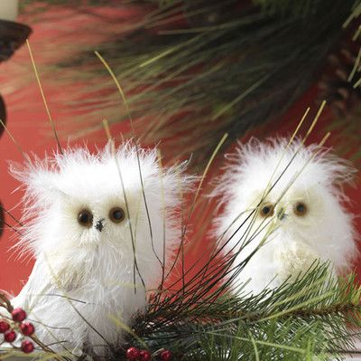 White Feathered Owl Ornament Set,RAZ 2015 Natural Elegance Collection
