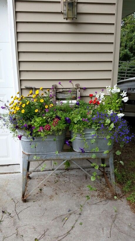 Old wash tubs as planters.