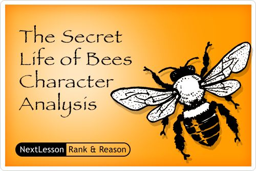 an analysis of the book the secret life of bees The secret life of bees themes/theme analysis/point of view by sue monk kidd  free study guide-the secret life of bees by.